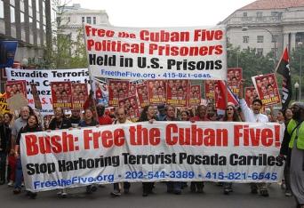 cuban 5