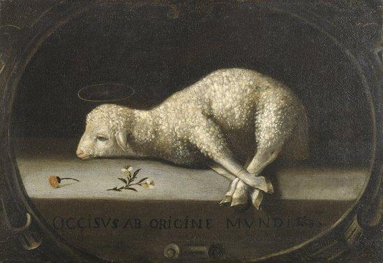 sacraficial lamb