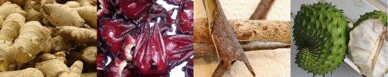 Ginger, sorrel, maubi bark, soursop